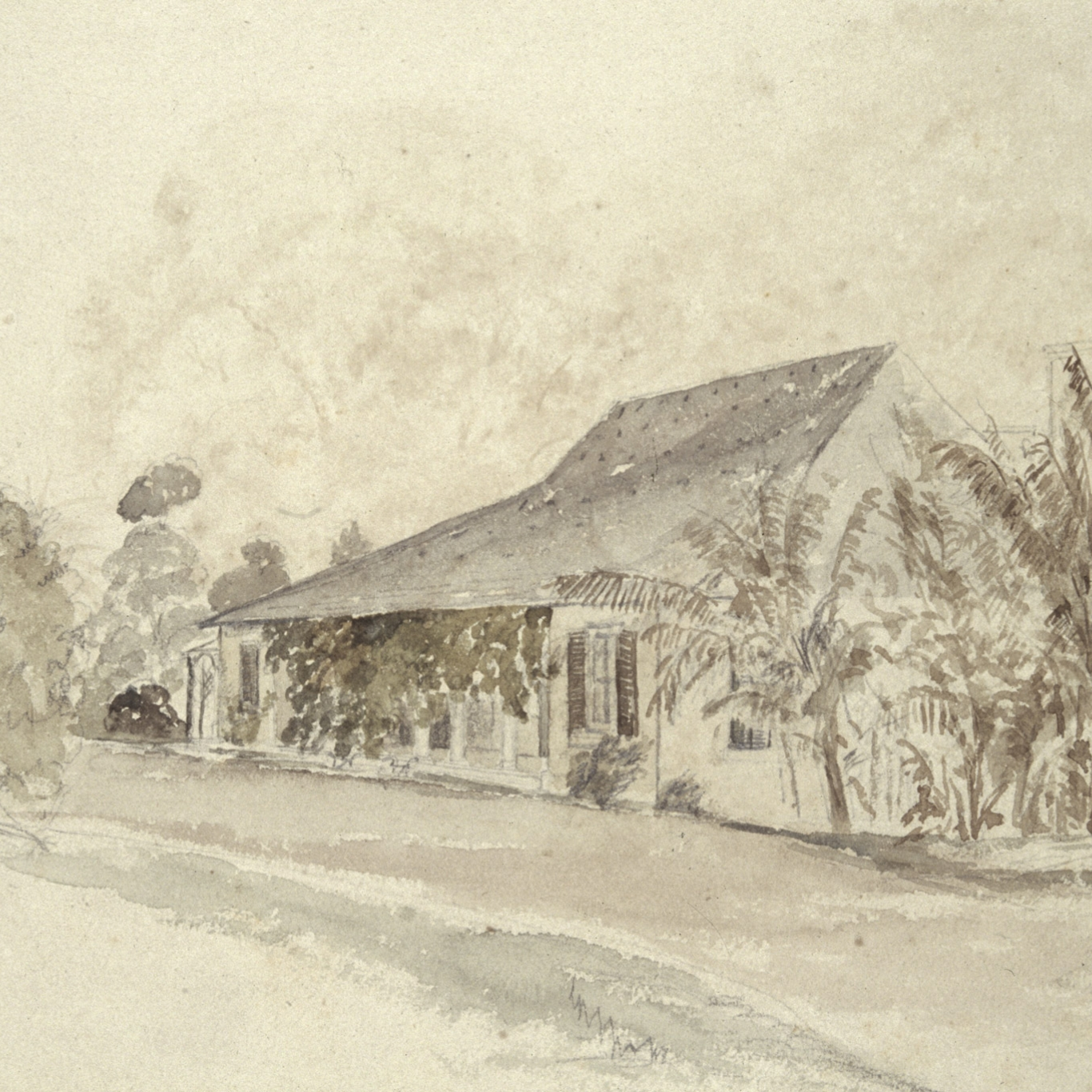 Watercolour of colonial era house with trellised verandah and trees.