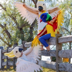 Three performers dressed as Australian native birds (two cockatoos and one rainbow lorikeet) in outdoor setting.
