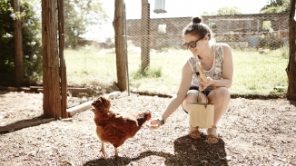 Woman feeding a chicken
