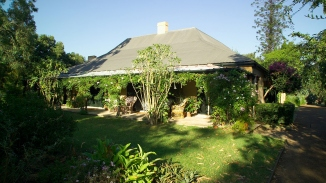 Vine covered eastern verandah of single storey farmhouse with broad metal roof viewed across green lawn and garden