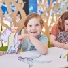 Children in the Forces of Nature activity Hub