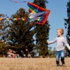 Boy flying kite in field.