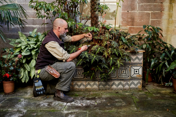 Man tending potted plants on stand.