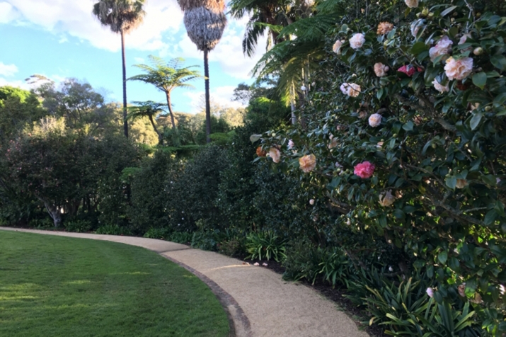 A path along the pleasure garden at Vaucluse House