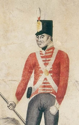 Detail of soldier showing red coat with yellow collar and cuffs.