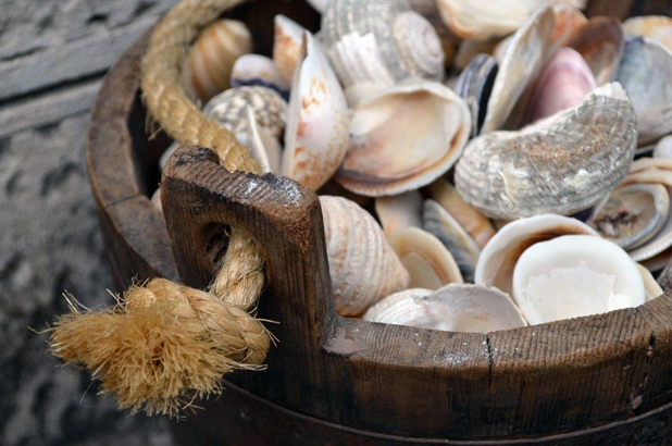 A picture of oyster shells in a wooden bucket