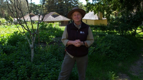 The kitchen garden with Anita Rayner